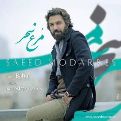 دانلود موزیک ویدئو سعید مدرس مرغ سحر