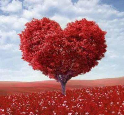 قلب مهراب